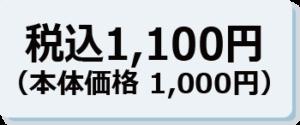 税込 1,100円(本体価格1,000円)